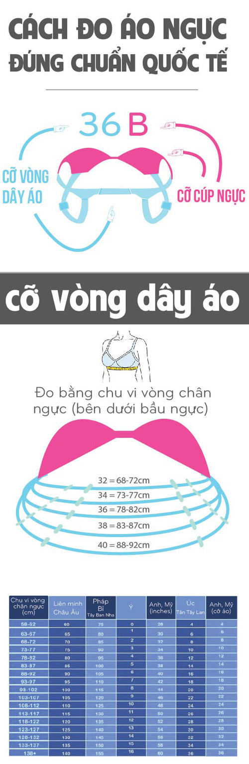 cach do kich co ao nguc dung chuan quoc te hinh anh 1