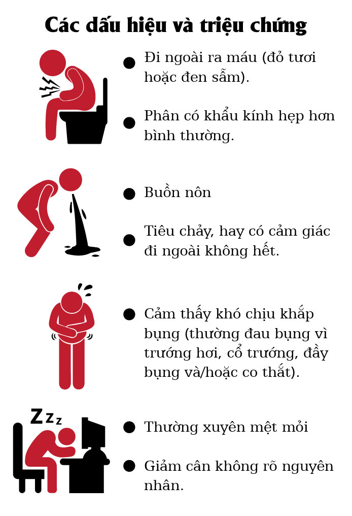 [infographic] dieu can biet ve benh ung thu truc trang hinh anh 3
