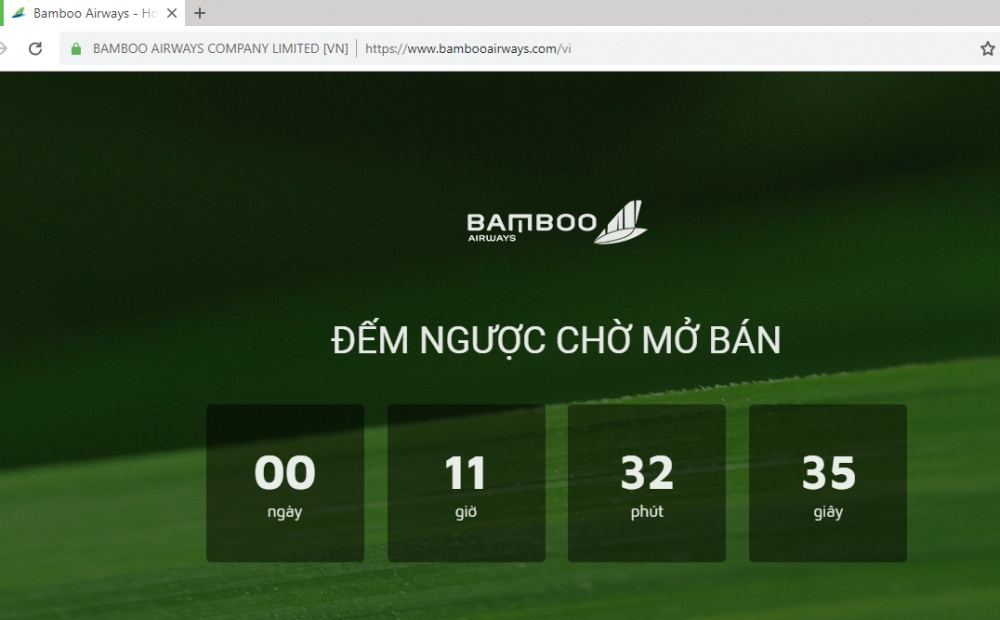 bamboo airways cua ong trinh van quyet doi dien voi website gia mao hinh anh 3