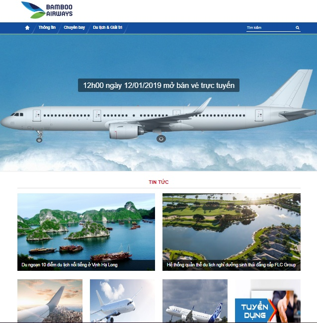 bamboo airways cua ong trinh van quyet doi dien voi website gia mao hinh anh 2