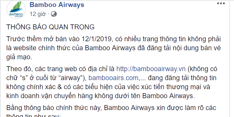 bamboo airways cua ong trinh van quyet doi dien voi website gia mao hinh anh 1