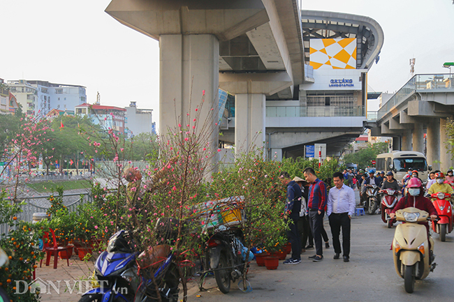anh, clip: ga duong sat tren cao hoa cho cay canh ngay giaptet hinh anh 10