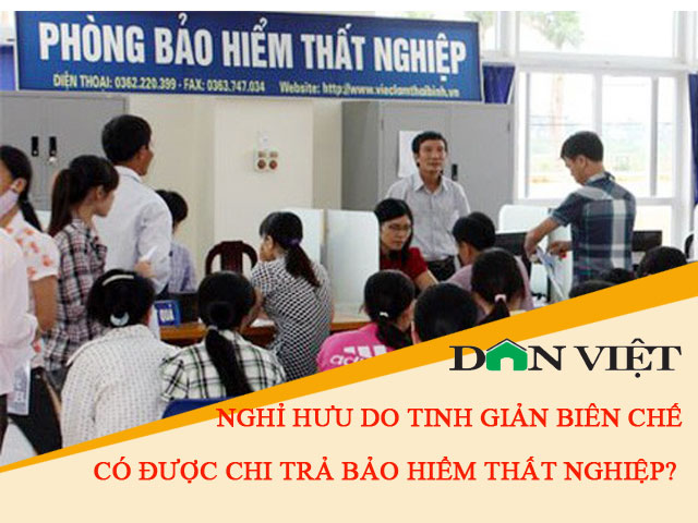 nghi huu do tinh gian bien che co duoc chi tra bh that nghiep? hinh anh 2
