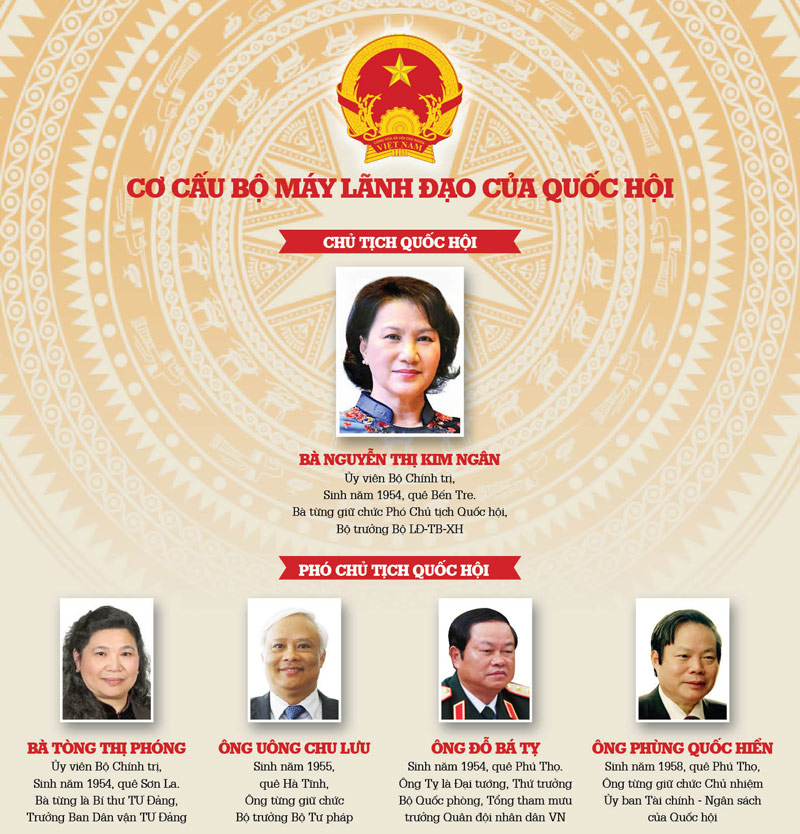 infographic ve co cau nhan su moi cua quoc hoi hinh anh 1