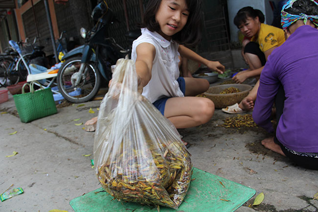 nghe la: nhat canh con trung cung co tien hinh anh 3