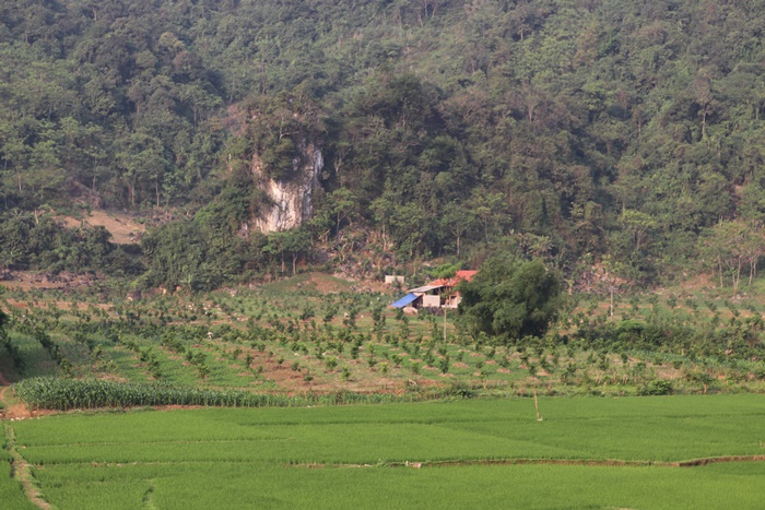 muong coi tap trung cac nguon luc ve dich nong thon moi hinh anh 4
