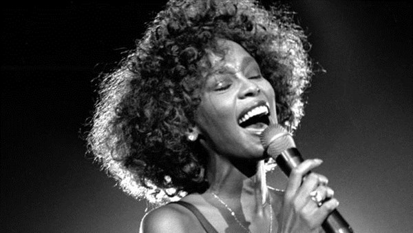hollywood lam phim tuong nho danh ca whitney houston hinh anh 1