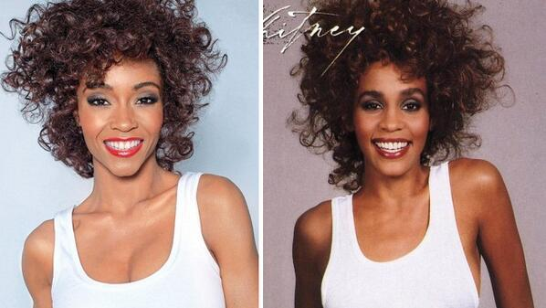 hollywood lam phim tuong nho danh ca whitney houston hinh anh 3