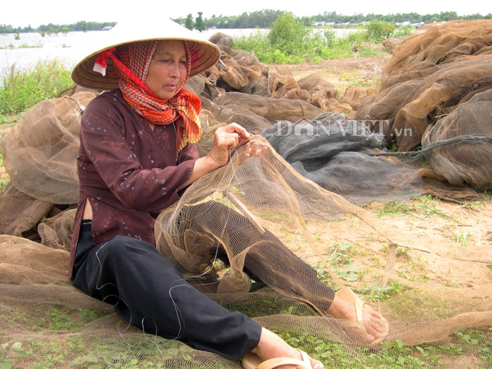 mien tay mua nuoc, ca linh ve! hinh anh 6