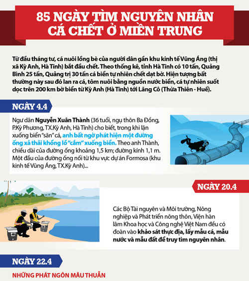 infographic toan canh vu formosa xa thai ra bien mien trung hinh anh 1