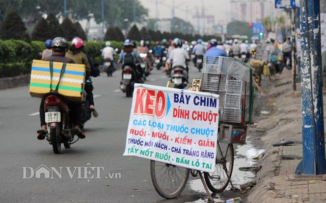 anh: can canh dat giap ranh san bay tan son nhat can giai toa hinh anh 8