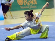 The thao - The thao Viet Nam co tam HCV thu 2 tai SEA Games 29