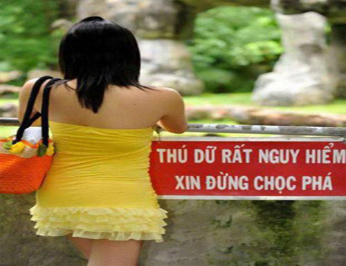 """quay"" the nay thi anh em cung chao thua hinh anh 3"