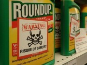 Tin moi vu kien Monsanto: Bayer ban tai san, cat 12.000 viec lam
