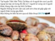 Nha nong - Ca Mau: Thong tin chinh thuc ve tin don an so lua do gay tu vong
