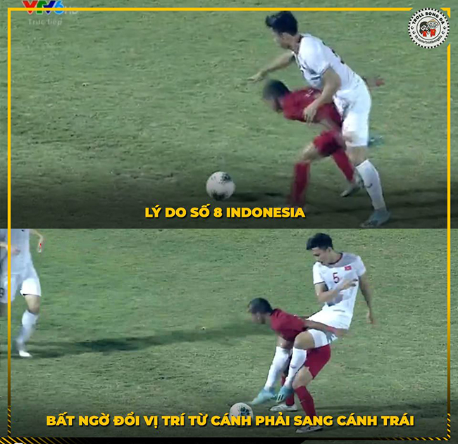 """cong dong mang ha he che anh viet nam """"ha dep"""" indonesia hinh anh 1"""