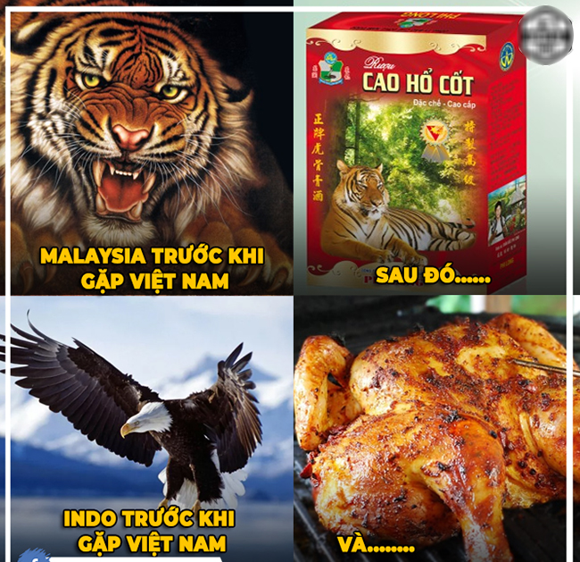 """cong dong mang ha he che anh viet nam """"ha dep"""" indonesia hinh anh 12"""