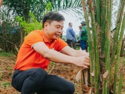 Cong nghe - Run For Green 2019 chung tay trong 20.000 cay xanh